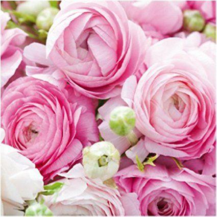 40 hochwertige Servietten mit Blumenmotiven / Motivservietten / Dekorservietten 33x33cm (KW15-073 Blumenmotiv rosa 2)