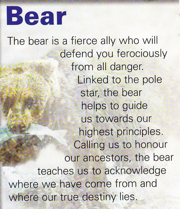 Bear spiritual guide                                                                                                                                                                                 More