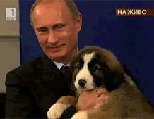32 Pictures That Prove Vladimir Putin Is Only Human