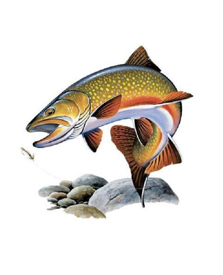 Fishing T-SHIRT,  Brook Trout Fishing T-SHIRT, Trout Fishing Sweatshirt, Trout Fishing Fabric,   249o by AlwaysInStitchesCo on Etsy