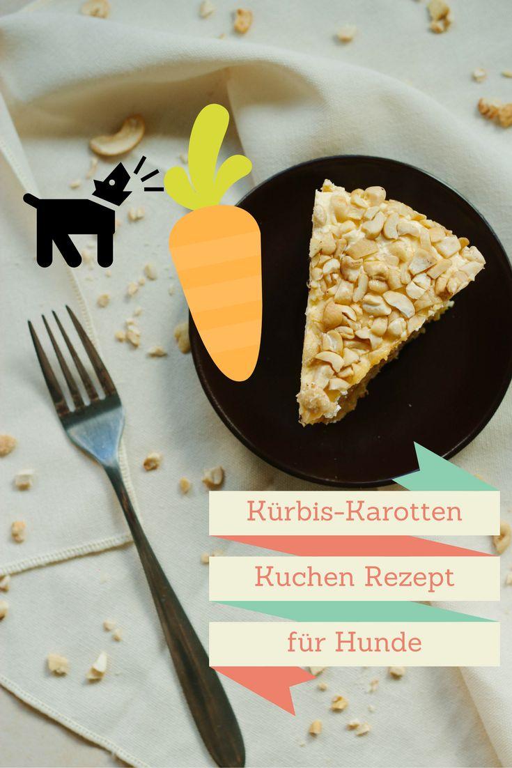 Hier gelangt ihr zu einem einfachen Rezept für einen Kürbis-Karotten-Kuchen für Hunde!