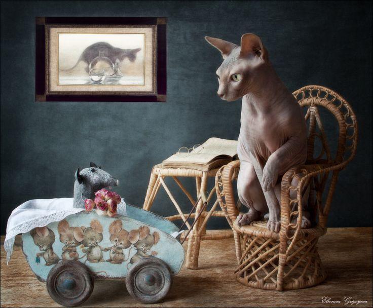 #Кошки-мышки #Натюркотики Author: Eleonora Grigorjeva