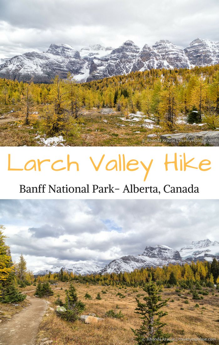 Larch Valley Hike Banff National Park S Most Beautiful Autumn Hike Canadian Travel Canada Travel Banff National Park