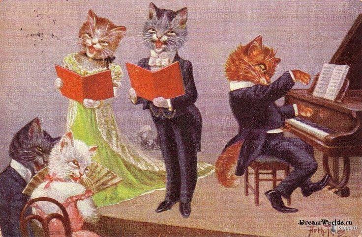 суп свежих поющие коты открытка параметры выставляются вручную