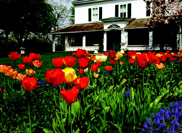 London's Eldon House is known for it's stunning grounds. Come visit and enjoy the local heritage of Ontario's Southwest