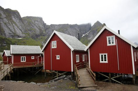 Summer Cabins at Reine, Lofoten Islands, Norway, Scandinavia, Europe Photographic Print by David Lomax at AllPosters.com