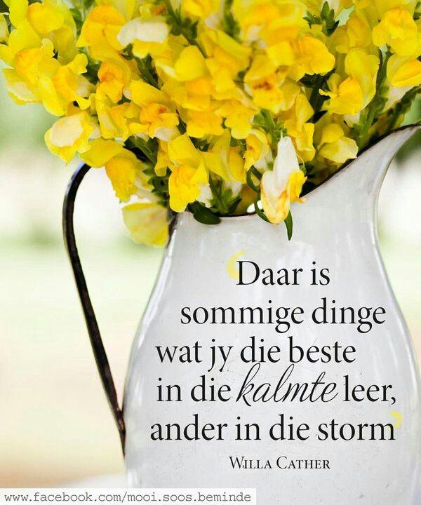 __ⓠ Willa Cather ...Daar is sommige dinge wat jy beter in die stilte leer; ander on die storm... #Afrikaans #LearningCurves #beStill