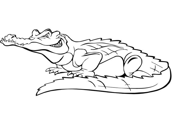 Crocodile Coloring Pages Collection In 2020 Crocodile Eating