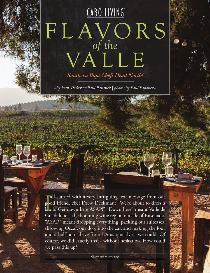 Cabo Living Magazine - Spring 2015 - Powered by PageTurnPro.com #Deckmans Valle de Guadalupe
