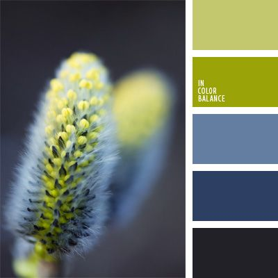 Das Frühlingsgrün lässt sich in dieser kontrastierenden Farbpalette mit den kalten blauen Tönen kombinieren.Neutraler olivgrüner Ton weicht und gleicht di.