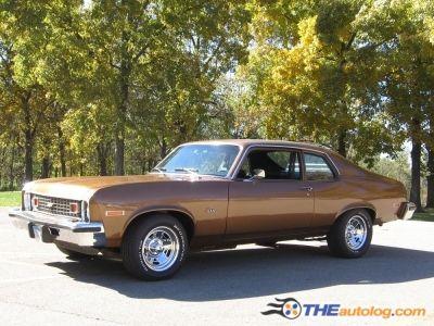 First Car I drove when I got my license.  1974 Chevy Nova