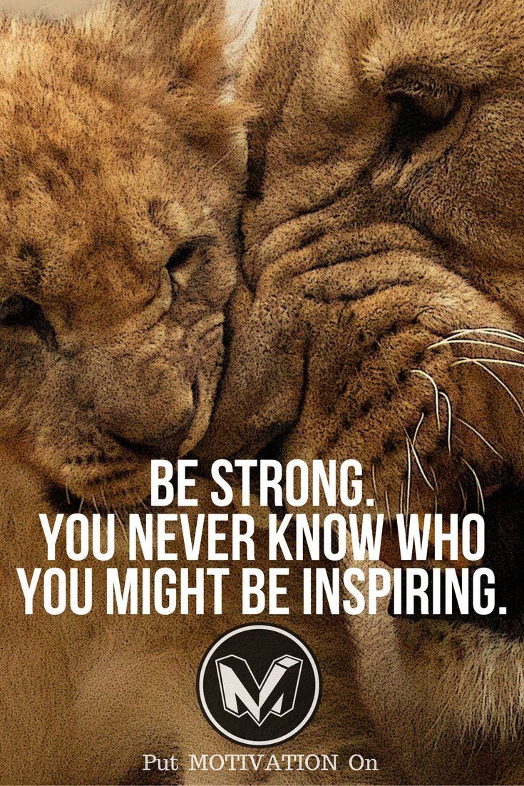 Be strong. Follow all our motivational and inspirational quotes. Follow the link to Get our Motivational and Inspirational Apparel and Home Décor. #quote #quotes #qotd #quoteoftheday #motivation #inspiredaily #inspiration #entrepreneurship #goals #dreams #hustle #grind #successquotes #businessquotes #lifestyle #success #fitness #businessman #businessWoman #Inspirational