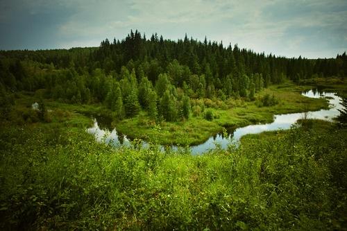 Ness Creek, #Saskatchewan
