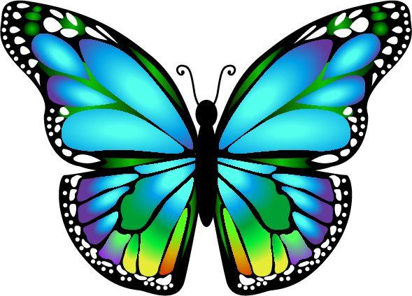 0_129ba5_1d6bdaa9_orig (589×424) | Butterflies | Butterfly ...