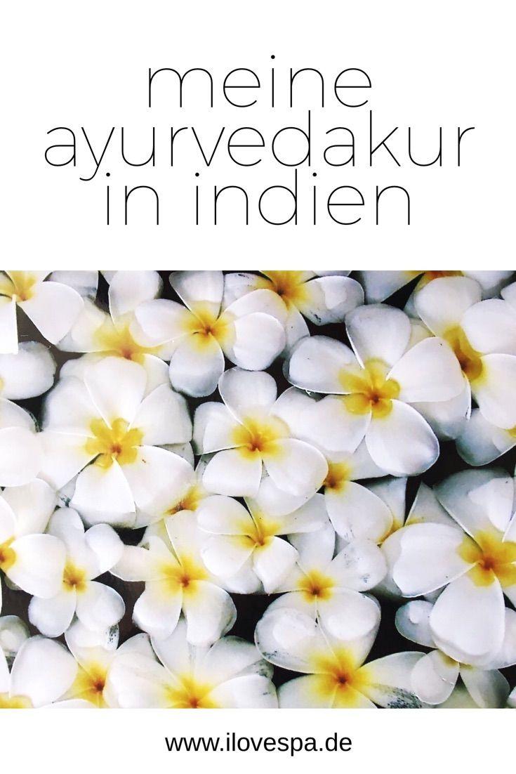 Meine zweite Ayurvedakur in Indien - Ayurveda Kur im Kadaltheeram Beach Resort Indien