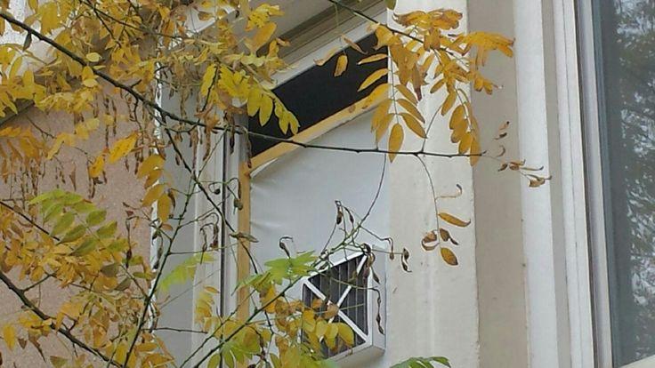 Désamiantage fenêtre ouverte et bache qui se détache