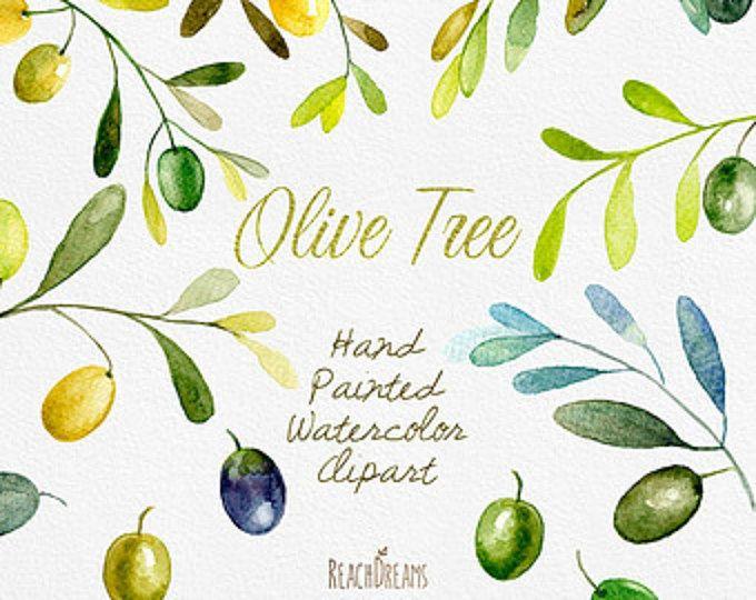 Acquerello di oliva Clipart. A mano pittura arte, fai da te inviti, inviti matrimonio, rustico, download immediato