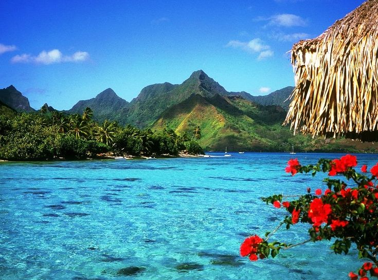 French Polynesia. Motu Moie is a private island in the district of Patio island of Taha'a with view to the stunningly beautiful mystical island of Bora Bora.   The island is approximately 26 acres covered with coconut palms, iron wood, various tropical trees and hibiscus.
