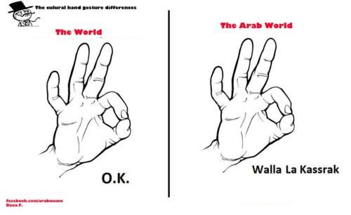 In the Middle East, we consider the ok sign as an insult ^.^