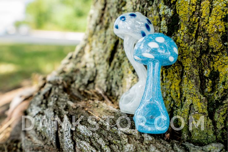 """MATHEMATIX GLOW IN THE DARK MUSHROOM SHERLOCK PIPE; the bottom of the mushroom's """"stalk"""" has a deep bowl which connects to a curved Sherlock-style neck and ends with the wide and rounded mushroom mouthpiece. The entire piece is made of glow in the dark fritted glass that makes the pipe a beautiful show piece at low light parties. If you're looking for a pipe that's unique and quirky, look no further than this American made hand pipe."""