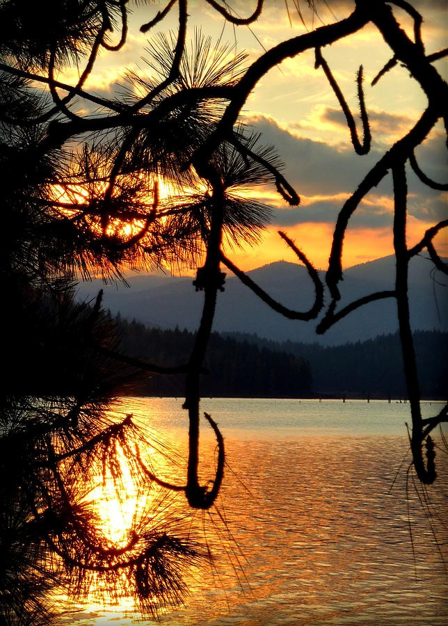 382 best IDAHO images on Pinterest | Nature, Landscapes and Beautiful places