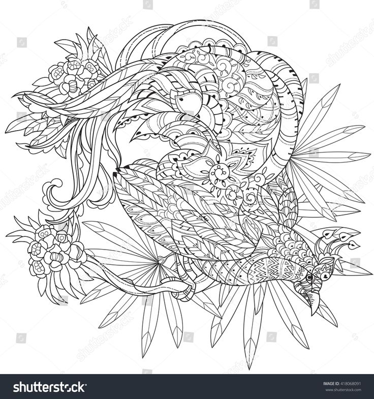 Zentangle Stylized Tropical Bird Of Paradise Sketch For Tattoo Or Makhenda Adult Coloring Book Collection Boho Style