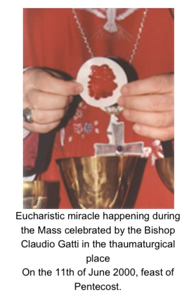 Eucharistic Miracle More