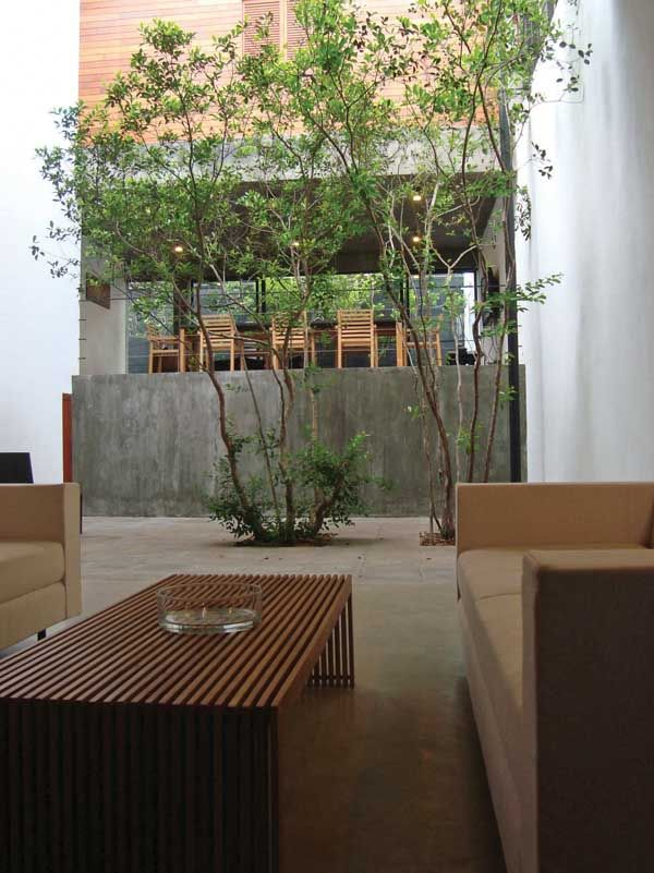 157 best images about courts on pinterest trees for Courtyard designs in sri lanka