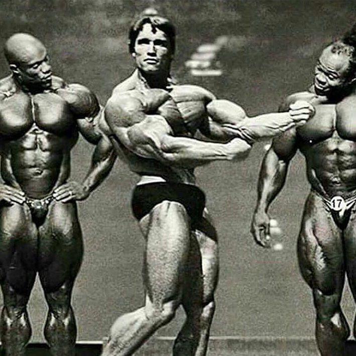 17 Best images about Arnold Schwarzenegger