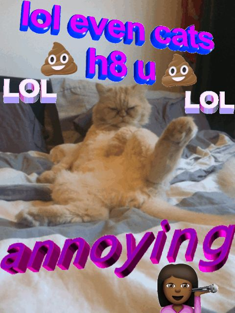 New trending GIF on Giphy. cat annoying lou gif editor lol even cats hate u. Follow Me CooliPhone6Case on Twitter Facebook Google Instagram LinkedIn Blogger Tumblr Youtube