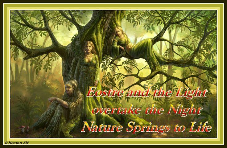 Spring 1 . . © MarianRW