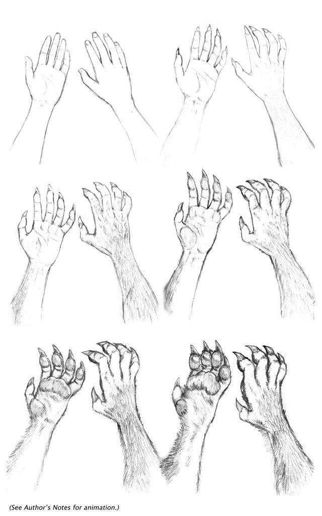 Kate Hands Transformation Seq. by dirktiede.deviantart.com on @DeviantArt