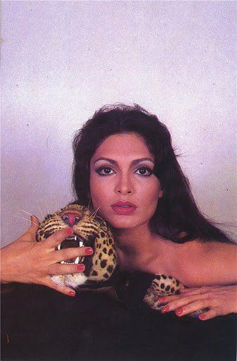Bollywood actress Parveen Babi