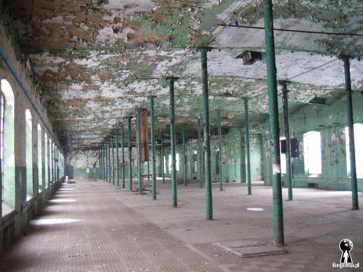 Zakłady Przemysłu Bawełnianego Uniontex II
