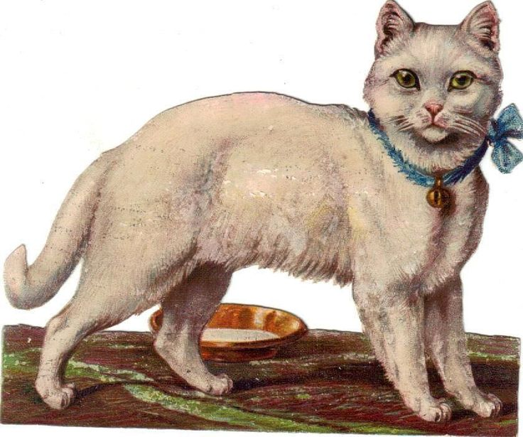 Larger Victorian Die Cut Scrap Kitten Blue Bow w Bell c1880s