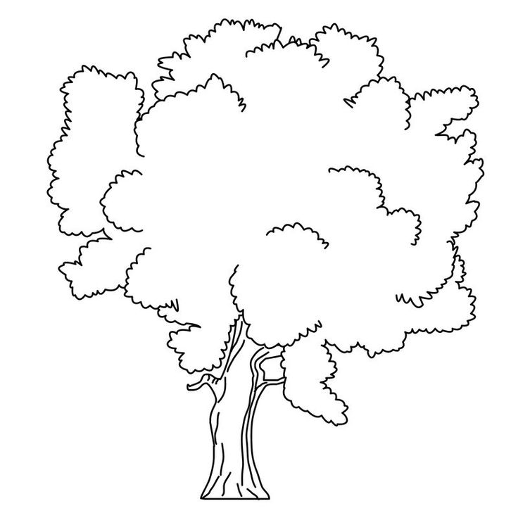 apple tree coloring pages free. Trees are plants that have ...