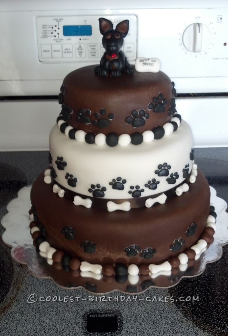Dog Cake Decorations Nz : 54 best images about agility cakes on Pinterest First ...