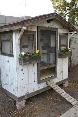 chicken coop... oooh dear husband please make one of these for me with a matching tool shed, and green house. I promise to love you forever!!
