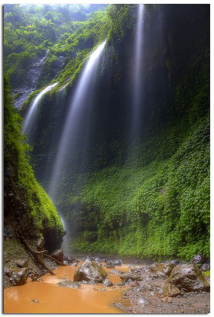 Madakaripura waterfall ~ East Java, Indonesia. Madakaripura waterfall is located in Sapih village, Lombang district, East Java, Indonesia. It's not far from the Mount Bromo area.     Comprising lines of waterfalls, it reaches a height of 200 meters from the bottom.     To reach Madakaripura waterfall from the parking lot at the entrance of Madakaripura area, you have to take a 2-km hike along and through the river.