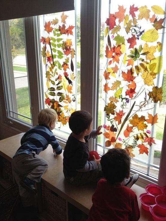 Koop een flinke rol doorzichtig plakfolie, ga met de kinderen mooie blaadjes…