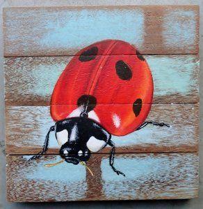 schilderij sloophout lieveheersbeestje sch2-01