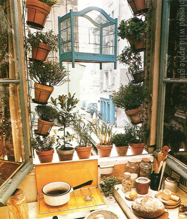 Kitchen Window Herb Planter: 17 Best Images About Garden With Minimal Commitment On