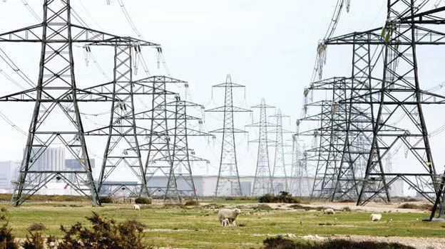 How HV transmission lines affects humans and plants?