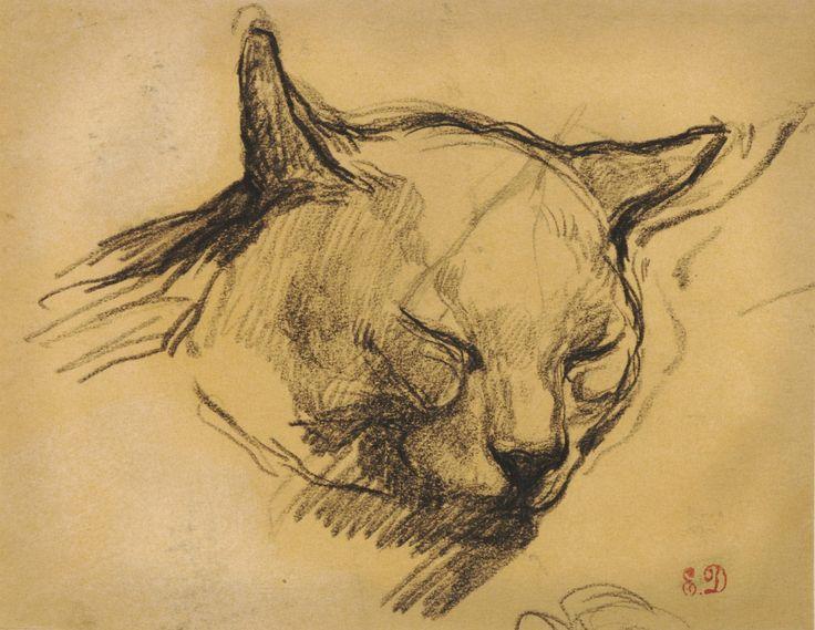 Study of a cat - Eugene Delacroix.