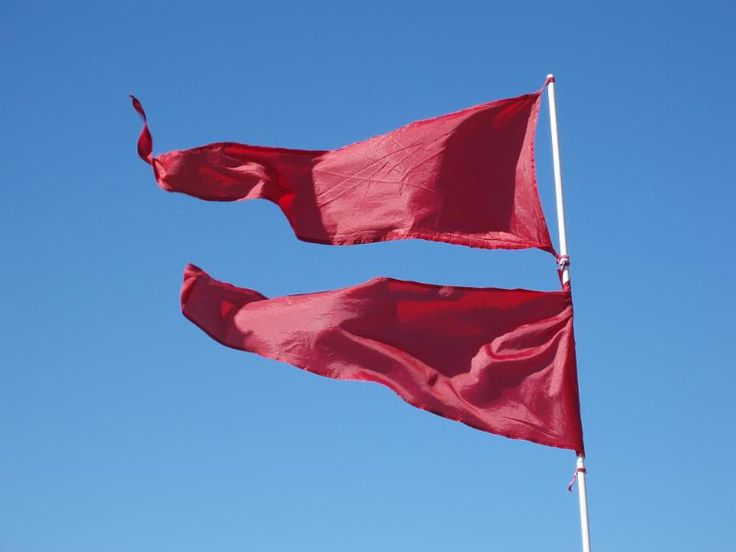 bight red flags blowing in the wind on a sunny day - free stock photo from www.freeimages.co.uk