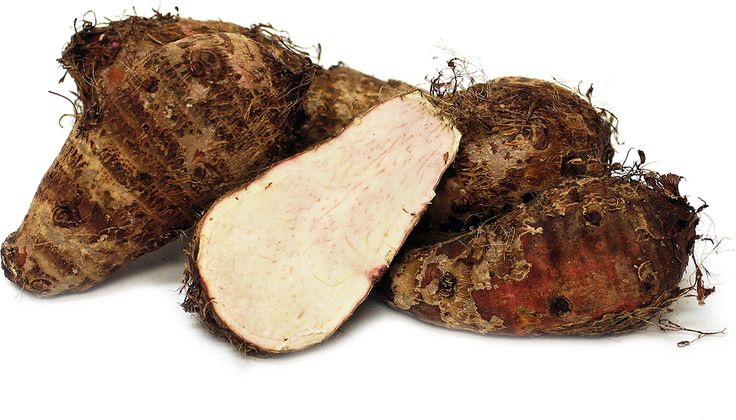Malanga root is the rhizome, or stem, of a plant known for both its ornamental…