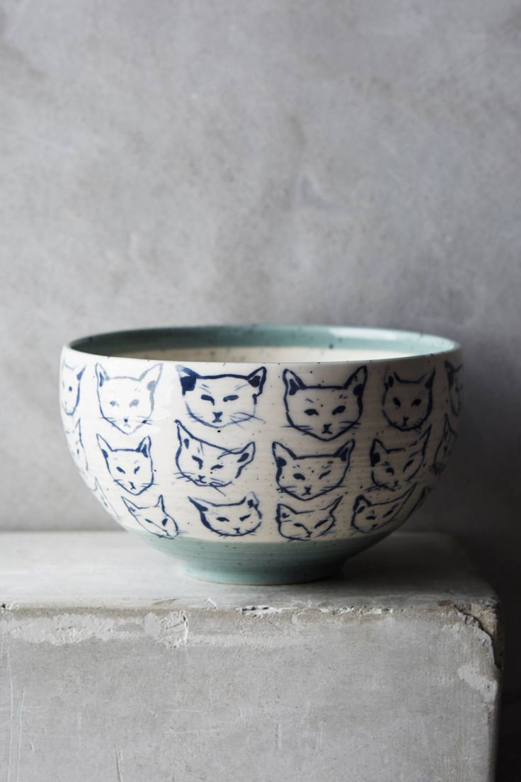 Cat Study Bowl