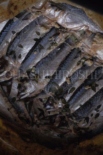 日本の発酵食 2 壷中の天 鯖なれずし