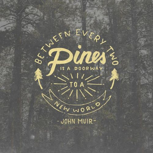 (via Between every two pines is a doorway to a new world - John Muir | type + design | Pinterest | John Muir, Pine and World)