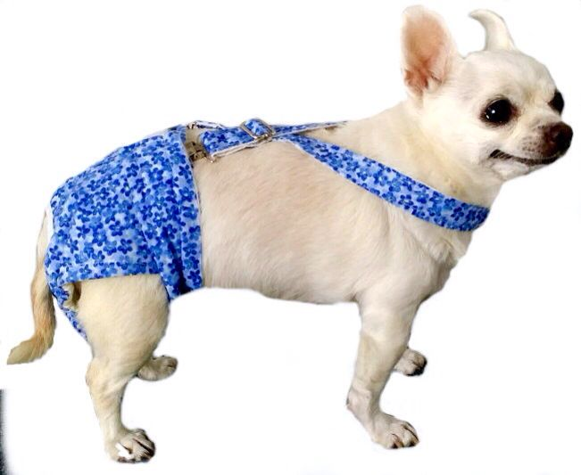 How To Make Belly Bands For Female Dogs